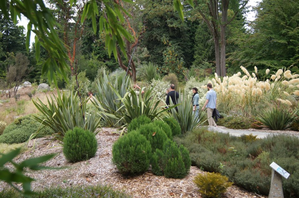 color photo of five people standing on crushed rock path, partially obscured by tall New Zealand flax plants and other shrubs in foreground. Ornamental pampas grass and trees are in background.