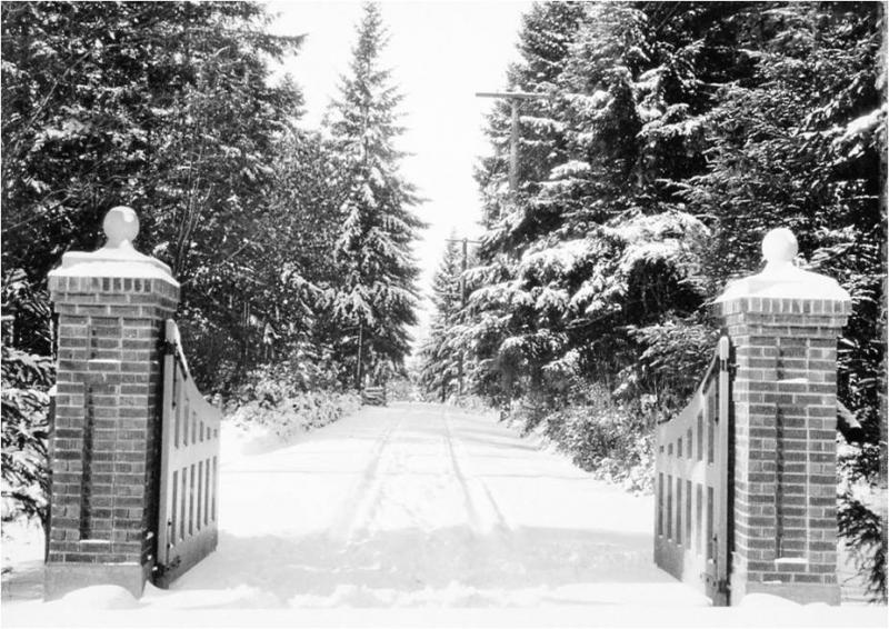 black and white photo of two brick pillars and gate open to a snow-covered drive bordered by tall evergreen trees.