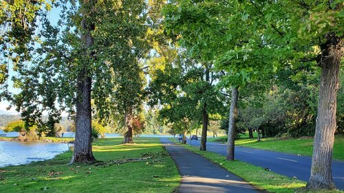 photo of asphalt path and roadway running along shoreline amid lawn and trees