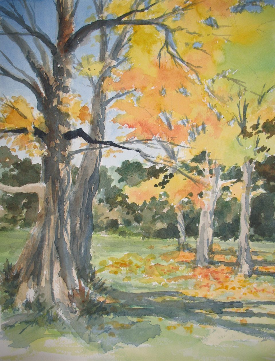 watercolor of tree trunks and fall foliage